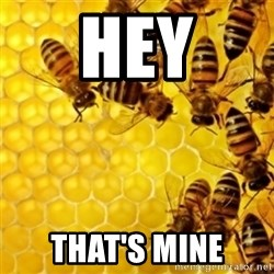 Honeybees - HEY THAT'S MINE
