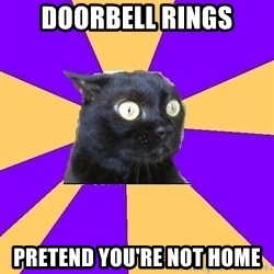Anxiety Cat - DOORBELL RINGS PRETEND YOU'RE NOT HOME