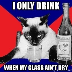 Alco-cat - I only drink when my glass ain't dry