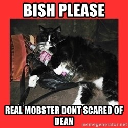 bitch please - bish please real mobster dont scared of dean