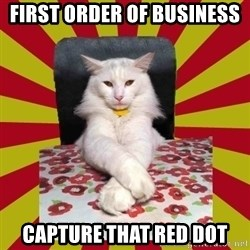 Dictator Cat - First order of business capture that red dot
