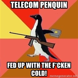 Socially Fed Up Penguin - Telecom penquin fed up with the f*cken cold!