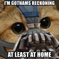 bane cat - I'M GOTHAMS RECKONING AT LEAST AT HOME