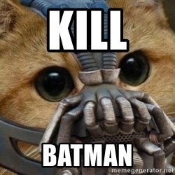 bane cat - KILL  BATMAN