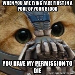 bane cat - when you are lying face first in a pool of your blood you have my permission to die