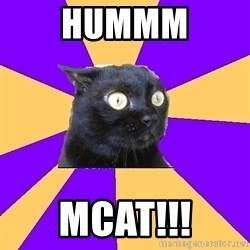 Anxiety Cat - hummm mcat!!!