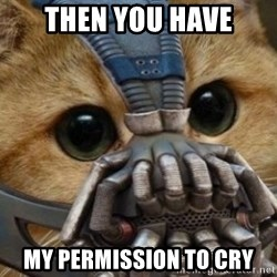 bane cat - THEN YOU HAVE MY PERMISSION TO CRY