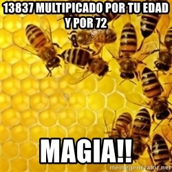 Honeybees - 13837 multipicado por tu edad y por 72 magia!!