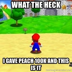 Mario looking at castle - WHAT THE HECK I GAVE PEACH 100K AND THIS IS IT