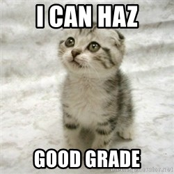 Can haz cat - I can haz good grade