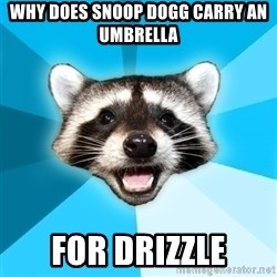 Lame Pun Coon - why does snoop dogg carry an umbrella for drizzle