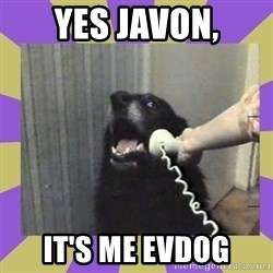 Yes, this is dog! - YES JAVON, IT'S ME EVDOG