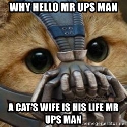 bane cat - WHY HELLO MR UPS MAN A CAT'S WIFE IS HIS LIFE MR UPS MAN