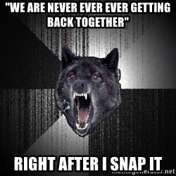 """Insanity Wolf - """"We are never ever ever getting back together"""" Right after I snap it"""