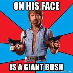Chuck Norris  - ON HIS FACE IS A GIANT BUSH