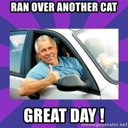 Perfect Driver - RAN OVER ANOTHER CAT GREAT DAY !