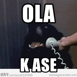 Hello This is Dog - Ola K ase