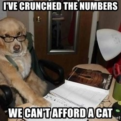 Financial advisor dog - I've crunched the numbers we can't afford a cat
