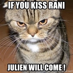 angry cat 2 - If you kiss rani  julien will come !