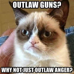 Grumpy Cat  - Outlaw guns? Why not just outlaw anger?