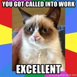 Grumpy Cat Smiling - you got called into work excellent