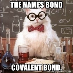 Chemistry Cat - The names bond covalent bond.