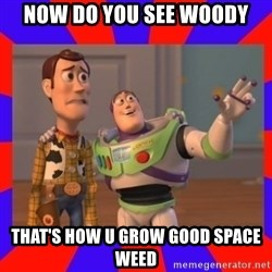 Everywhere - NOW DO YOU SEE WOODY THAT'S HOW U GROW GOOD SPACE WEED