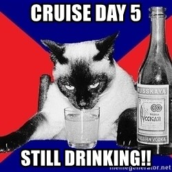 Alco-cat - CRUISE DAY 5 STILL DRINKING!!