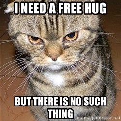 angry cat 2 - I need A FREE HUG But THERE IS NO SUCH THING
