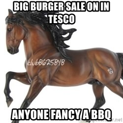 Typical horse model collector - BIG BURGER SALE ON IN TESCO ANYONE FANCY A BBQ