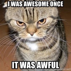 angry cat 2 - I was awesome once it was awful