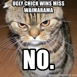 angry cat 2 - UGLY CHICK WINS MISS WAIMARAMA NO.