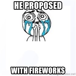 YES YOU CAN - he proposed with fireworks