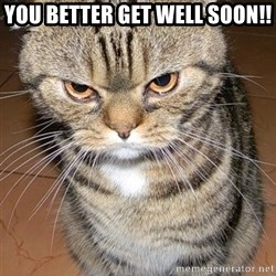 angry cat 2 - YOU BETTER GET WELL SOON!!