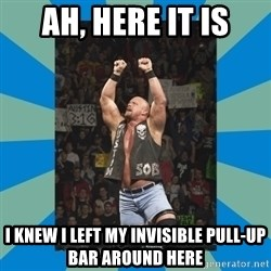 stone cold steve austin - Ah, here it is i knew i left my invisible pull-up bar around here
