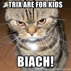 angry cat 2 - Trix are for kids Biach!