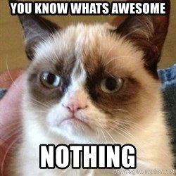 Madcat - you know whats awesome nothing