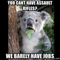 Koala can't believe it - you cant have assault rifles? we barely have jobs