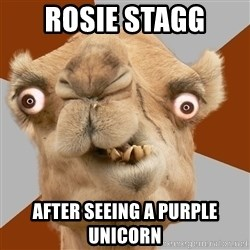 Crazy Camel lol - ROSIE STAGG AFTER SEEING A PURPLE UNICORN