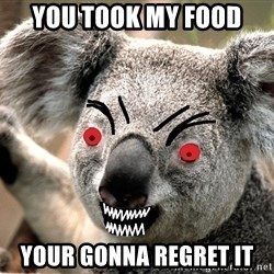 Abortion Koala - YOU TOOK MY FOOD  YOUR GONNA REGRET IT