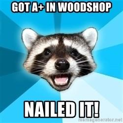 Lame Pun Coon - got A+ in woodshop  nailed it!