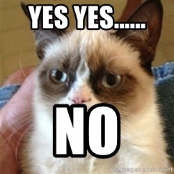Grumpy Cat  - Yes yes...... No