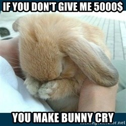Bunny cry - if you don't give me 5000$ you make bunny cry