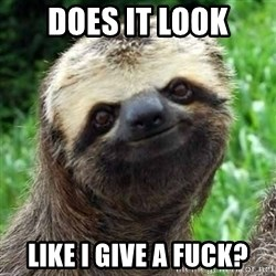 Sarcastic Sloth - DOes it look Like I give a Fuck?