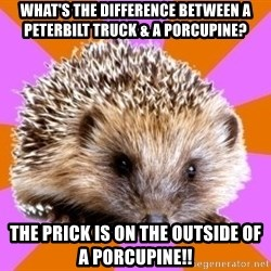 Homeschooled Hedgehog - what's the difference between a peterbilt truck & a porcupine? the prick is on the outside of a porcupine!!