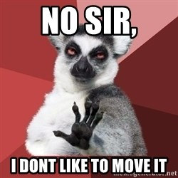 Chill Out Lemur - no sir, i dont like to move it