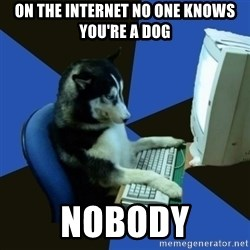 fake Dog  - ON THE INTERNET NO ONE KNOWS YOU'RE A DOG NOBODY
