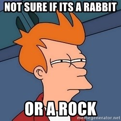 Futurama Fry - not sure if its a rabbit or a rock