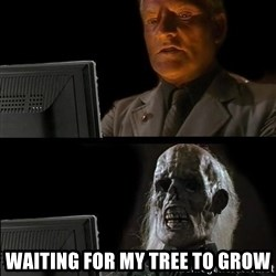 Waiting For -  waiting for my tree to grow