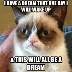 Grumpy Cat  - i have a dream that one day i will wake up & this will all be a dream